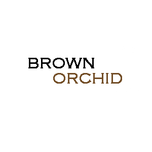 Brown Orchid