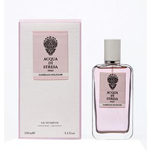 Camellia Soliflor