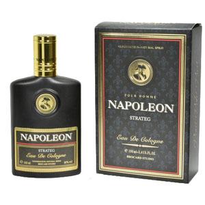 Napoleon Strateg